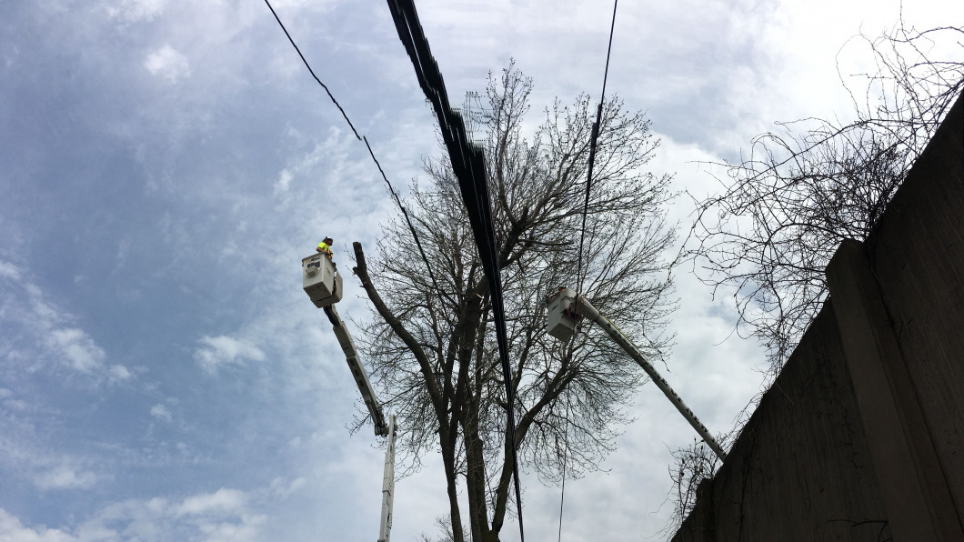 Be Proactive When It Comes to Power Lines